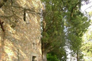 torre-dei-sogni-3