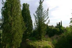 torre-dei-sogni-crete3