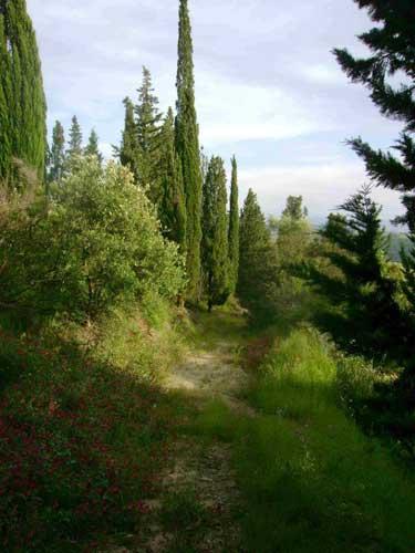 torre-dei-sogni-panorama4